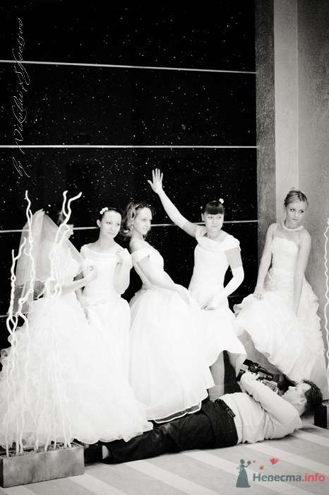 Фото 78871 в коллекции Парад Невест II - Фотограф Швецов Николай