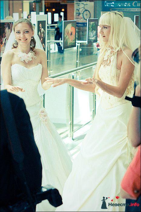Фото 107760 в коллекции Первая выставка Свадебной фотографии в Перми - Фотограф Швецов Николай