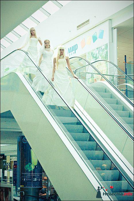 Фото 107766 в коллекции Первая выставка Свадебной фотографии в Перми - Фотограф Швецов Николай