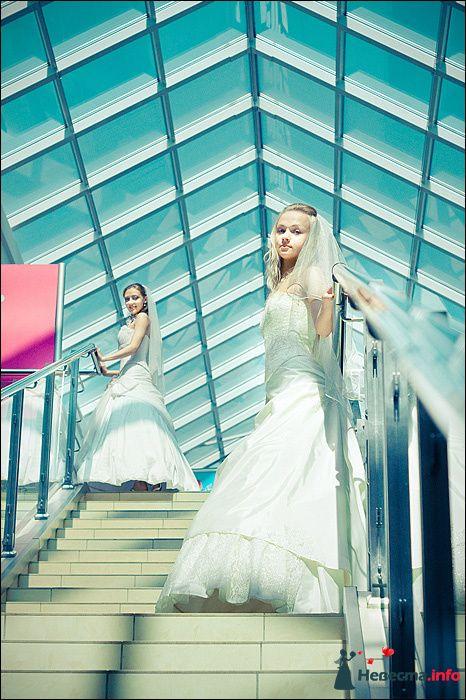 Фото 107791 в коллекции Первая выставка Свадебной фотографии в Перми - Фотограф Швецов Николай