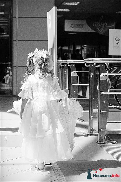 Фото 107807 в коллекции Первая выставка Свадебной фотографии в Перми - Фотограф Швецов Николай