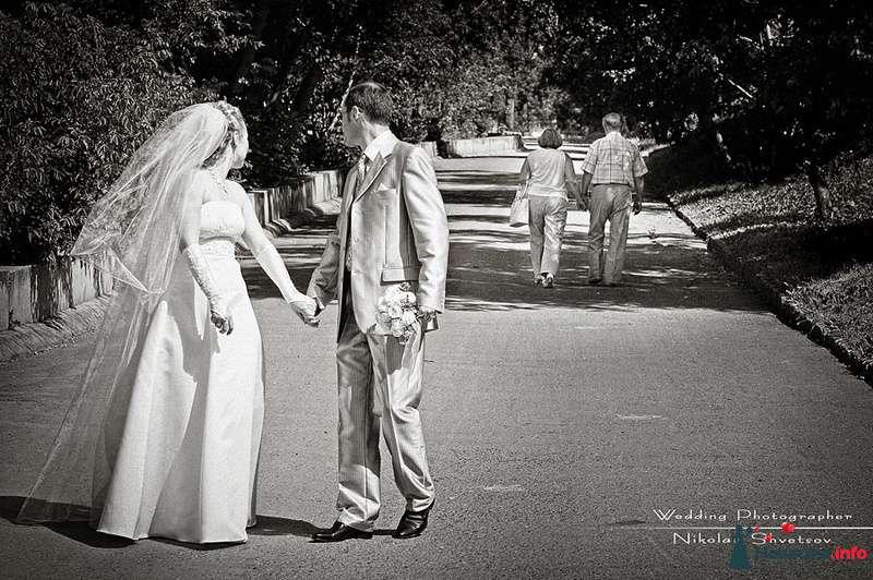 Свадьба Олега и Елены.  Да будет так и через ___ лет! - фото 123247 Фотограф Швецов Николай