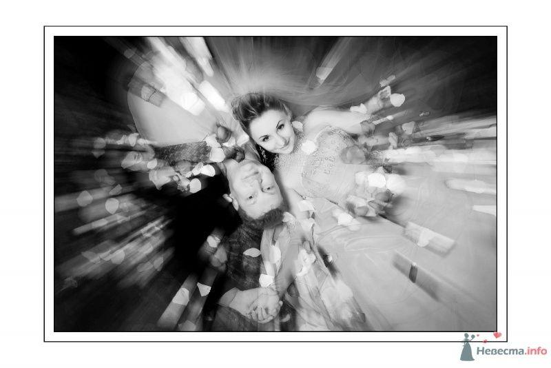 Фото 67634 в коллекции Мои фотографии - Фотограф Неукрытый Валерий
