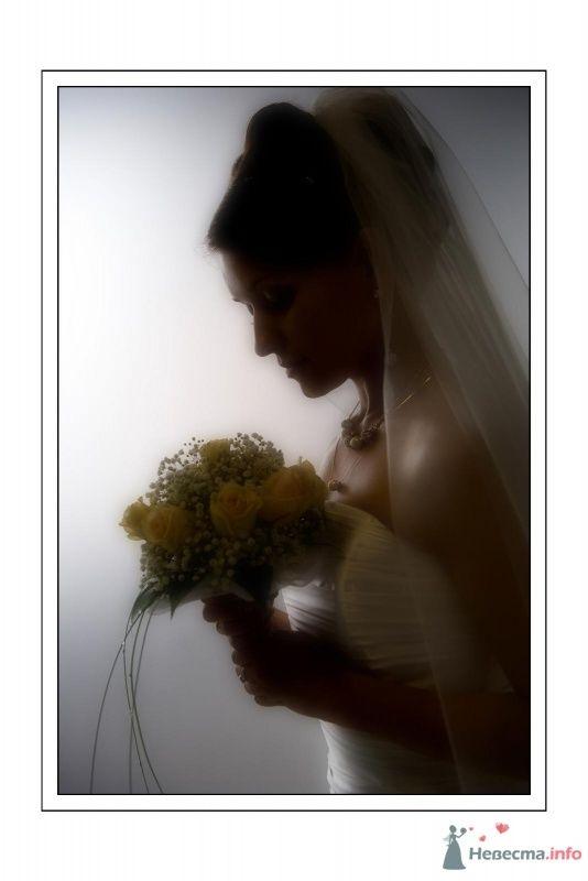 Фото 67639 в коллекции Мои фотографии - Фотограф Неукрытый Валерий