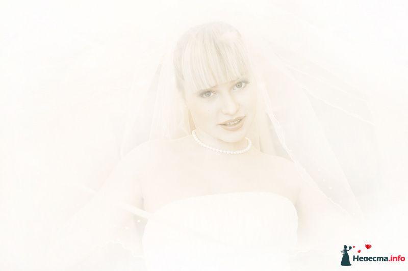 Фото 104078 в коллекции Мои фотографии - Фотограф Неукрытый Валерий