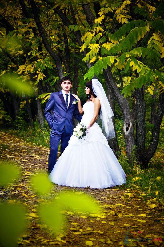 Фото 78823 в коллекции Свадебные фотографии - Art-Lex Studio -  фото и видеосъемка