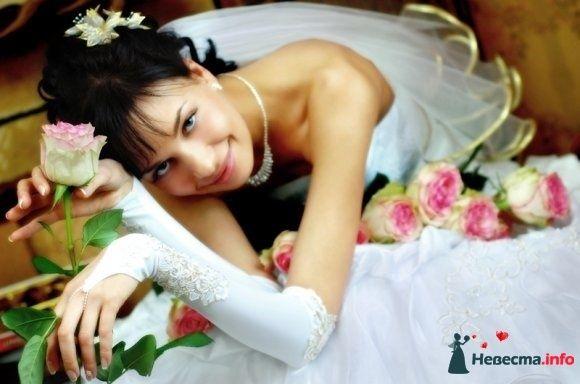 Свадебная фотосъемка в Саратове - фото 83033 Молодоженам.Ру - Фото и видеосъемка