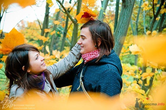 Фото 68574 в коллекции Love story - Bumble-bee
