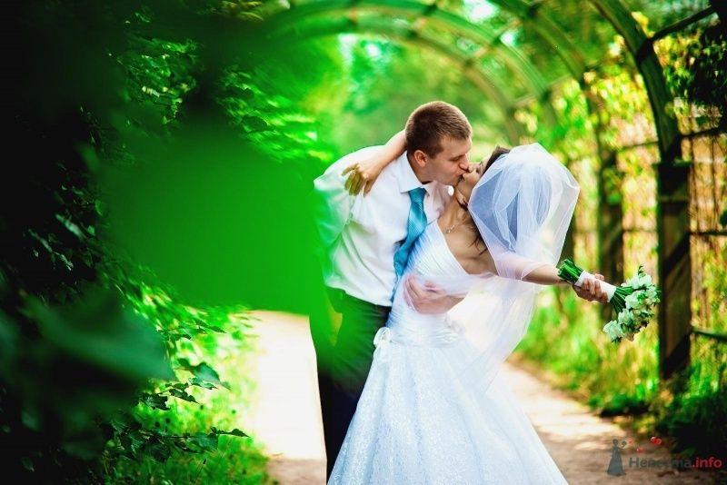 Жених и невеста целуются под зеленой аркой - фото 54353 Anjuta