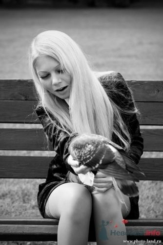 Фото 10512 в коллекции Love-Story: Любовь и голуби - Свадебные фотоистории от Андрея Егорова