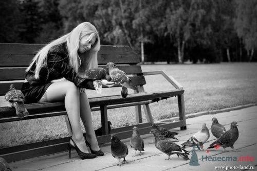 Фото 10513 в коллекции Love-Story: Любовь и голуби - Свадебные фотоистории от Андрея Егорова