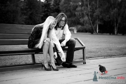 Фото 10514 в коллекции Love-Story: Любовь и голуби