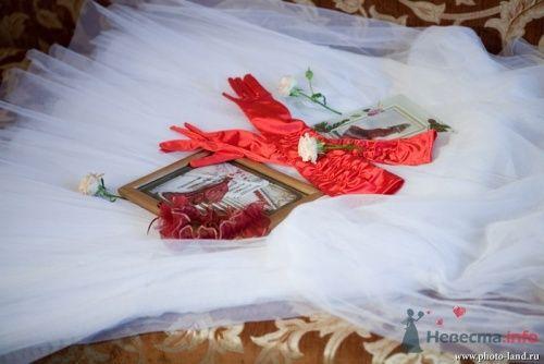 Фото 11072 в коллекции Свадьба Виктории и Сергея - Свадебные фотоистории от Андрея Егорова