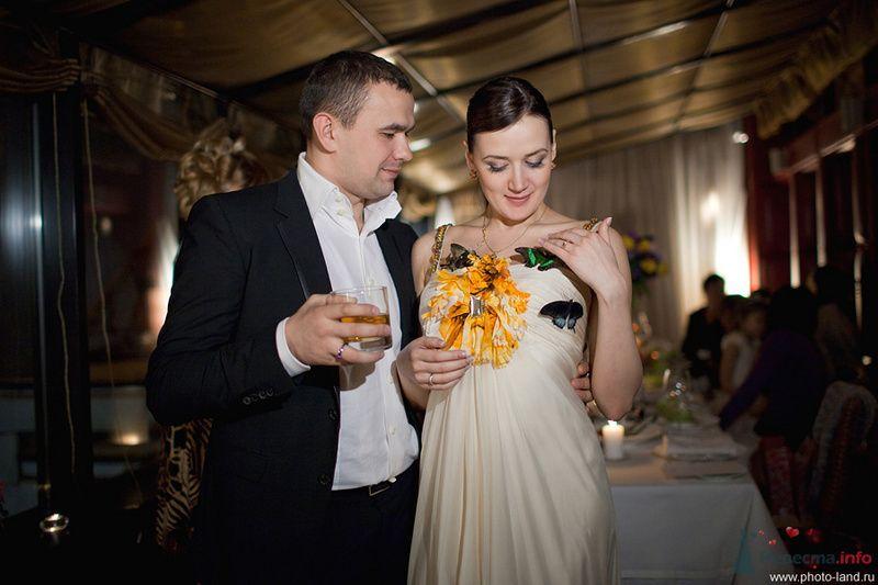 Свадебный фотограф Андрей Егоров - фото 78095 Свадебные фотоистории от Андрея Егорова