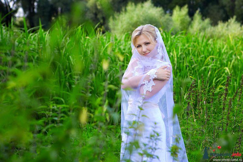 Катя и Саша. Свадьбы форумчанок  - фото 91653 Свадебные фотоистории от Андрея Егорова