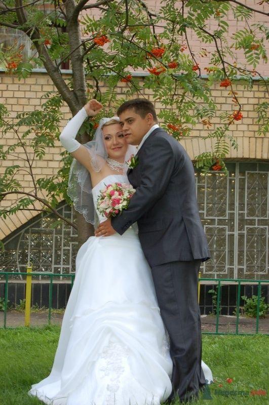 Фото 34015 в коллекции Картинки - Анечка-жена)))))))))