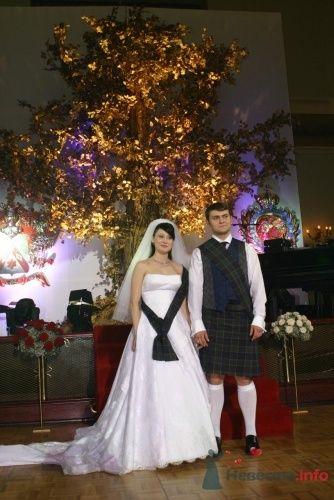 """Фото 5040 в коллекции Мои фотографии - Центр """"SV-Premier"""" - проведение свадеб"""