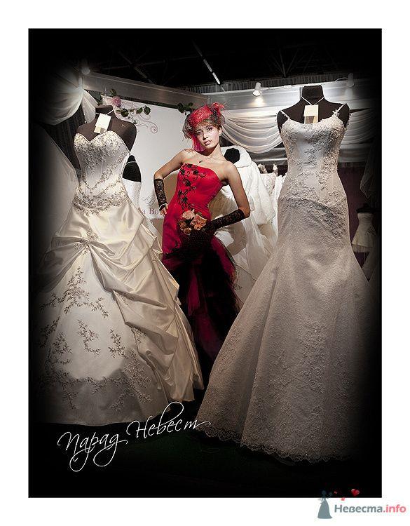 Фото 79183 в коллекции Парад Невест II - Фотостудия Александра Деменева