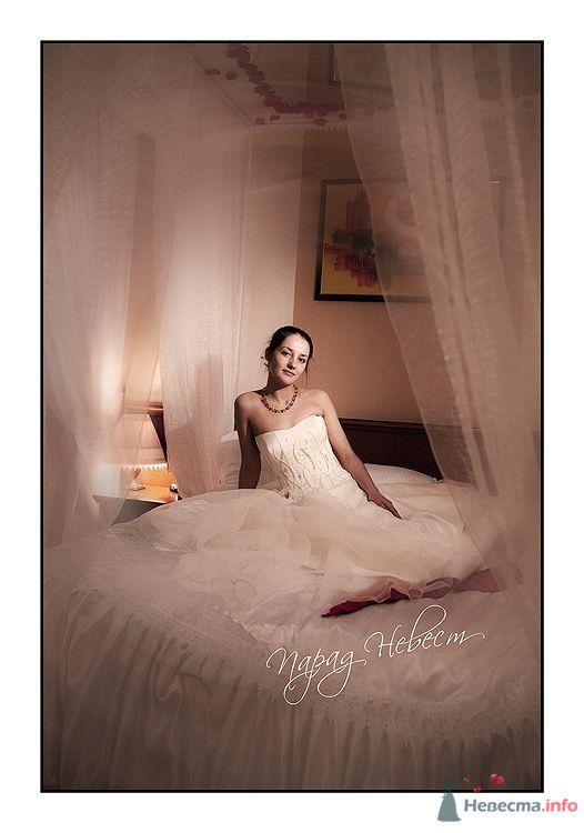 Фото 79185 в коллекции Парад Невест II - Фотостудия Александра Деменева