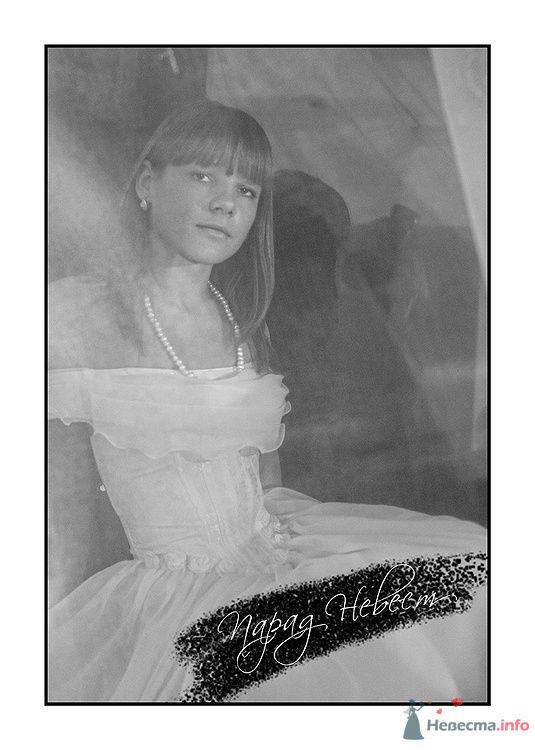 Фото 79197 в коллекции Парад Невест II - Фотостудия Александра Деменева