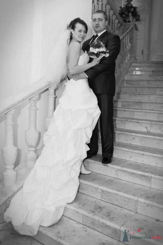 Фото 70448 в коллекции Свадебный фотограф г.Липецк - Невеста01