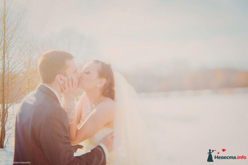 Фото 86706 в коллекции Невесты и женихи!  - Свадебный фотограф. Татьяна Гаранина