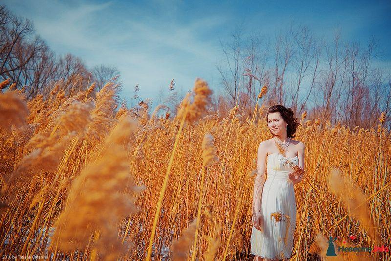 Фото 86717 в коллекции Невесты и женихи!