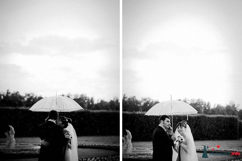 Фото 86762 в коллекции Борис и Тоня - Свадебный фотограф. Татьяна Гаранина