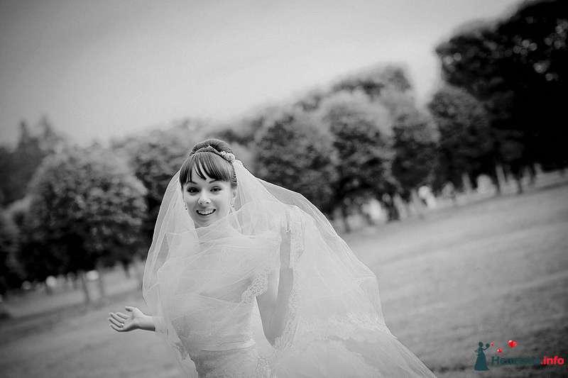 Невеста в белом длинном влатьев стоит в праке на фоне деревьев - фото 86766 Свадебный фотограф. Татьяна Гаранина