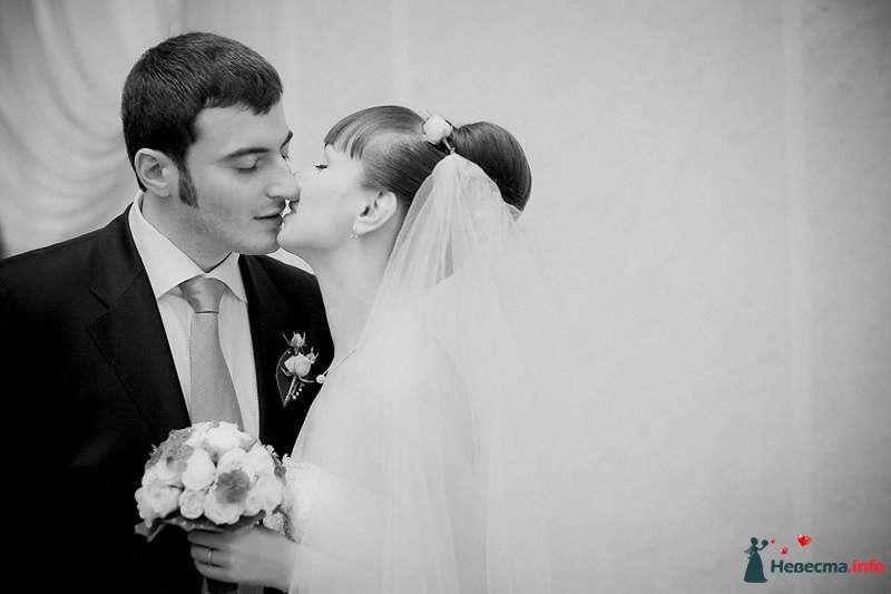 Фото 86801 в коллекции Борис и Тоня - Свадебный фотограф. Татьяна Гаранина
