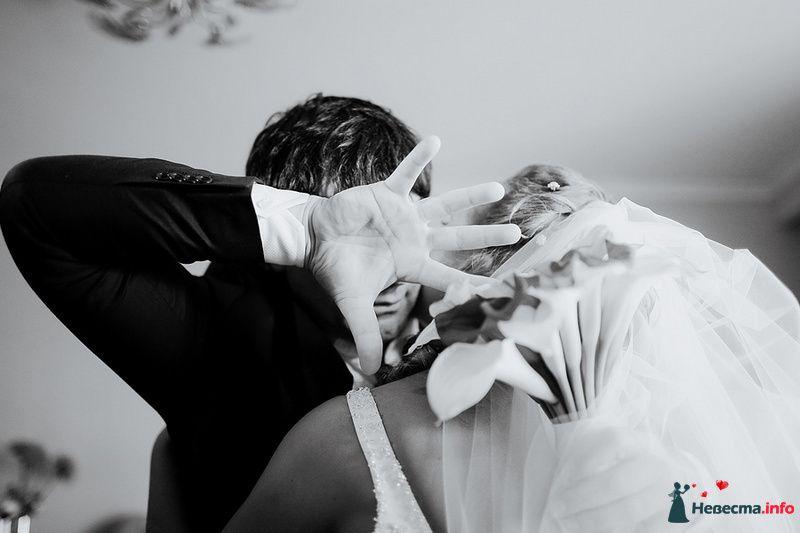 Фото 88992 в коллекции Катя и Серж! Свадебная серия! - Свадебный фотограф. Татьяна Гаранина
