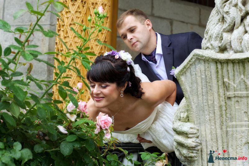 Невесты дают фото