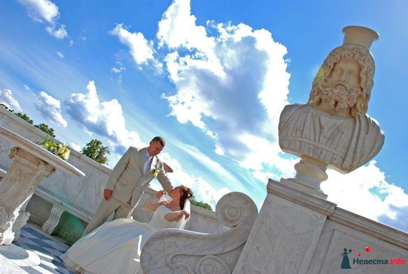 Фото 130070 в коллекции Свадьба Портфолио