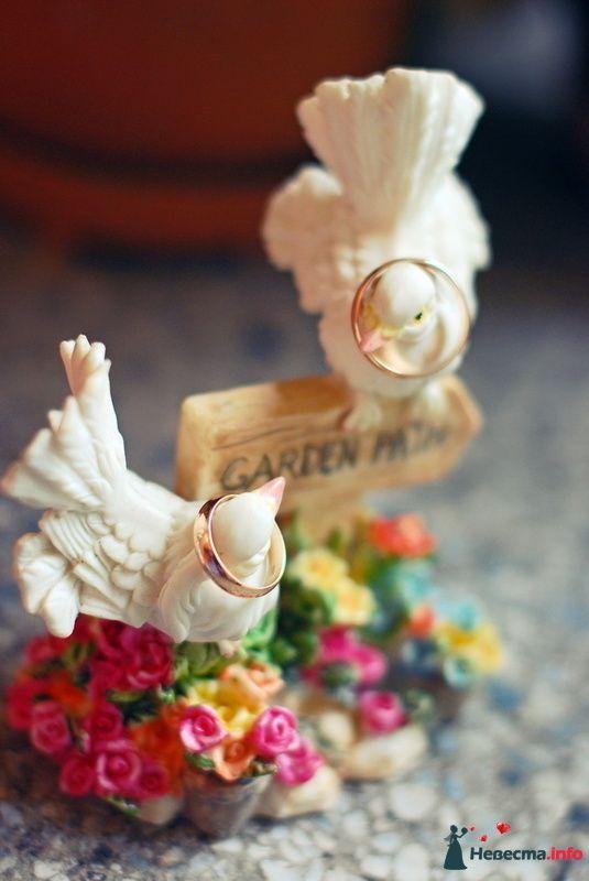 Фото 130073 в коллекции Свадьба Портфолио