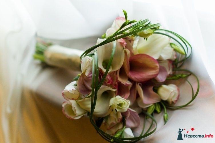 Букет невесты из белых эустом и оранжево-розовых калл, дополненный зеленью берграсса и белой атласной лентой  - фото 96397 Ksunya