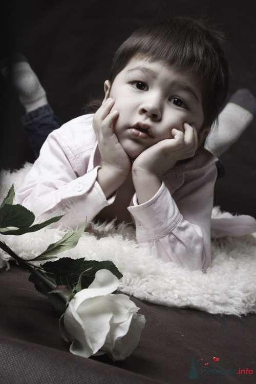 Фото 72710 в коллекции Детская - Анастасия Lokofoto - фотограф