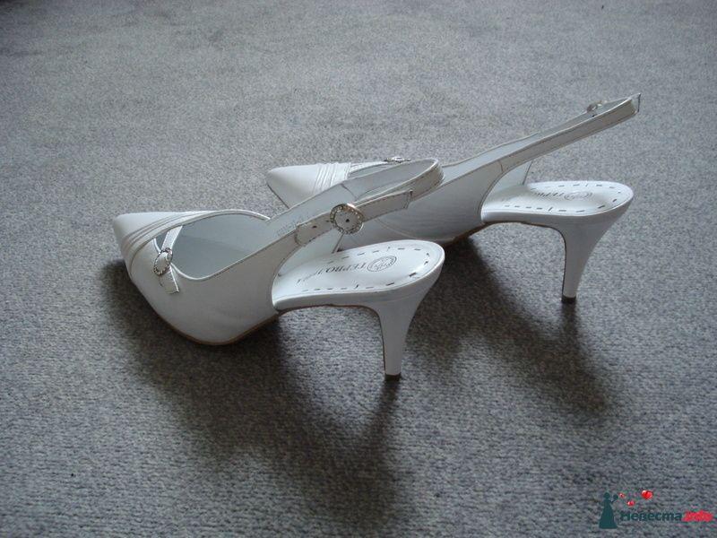 Мои  туфельки - фото 111147 Коши