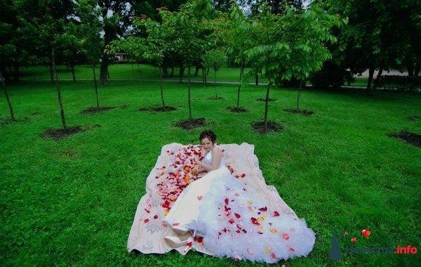 Фото 120446 в коллекции Свадьба - Vedochka