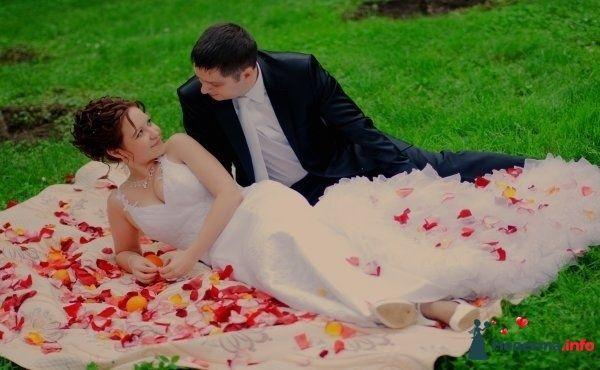 Фото 120454 в коллекции Свадьба - Vedochka