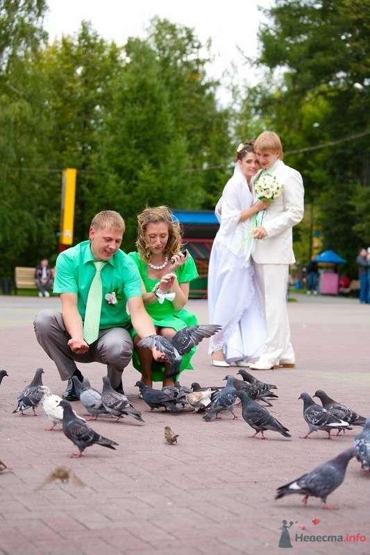 наши Свидетели и Мы! - фото 71937 Ксюшечка