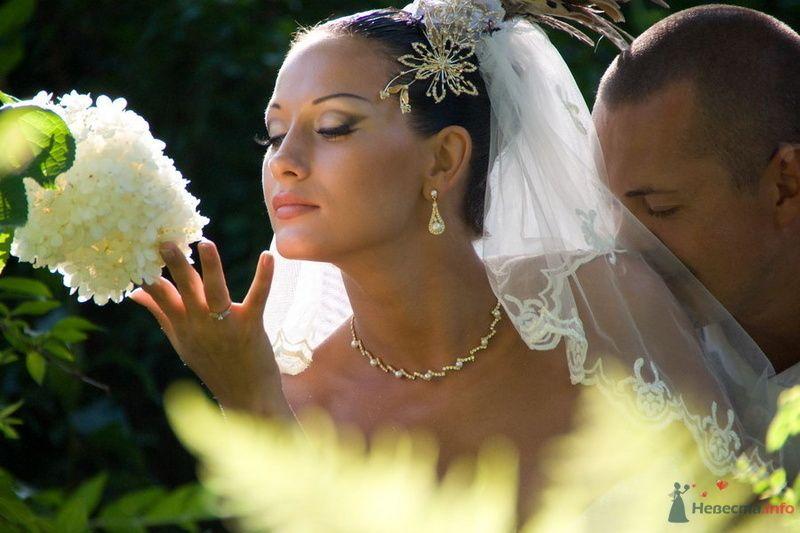 Фото 74005 в коллекции Свадебные радости! - Роман Савин