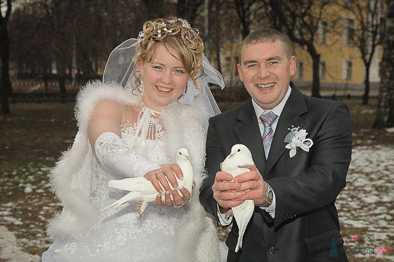 Голуби - фото 75158 Свадьбаяро - свадебные услуги