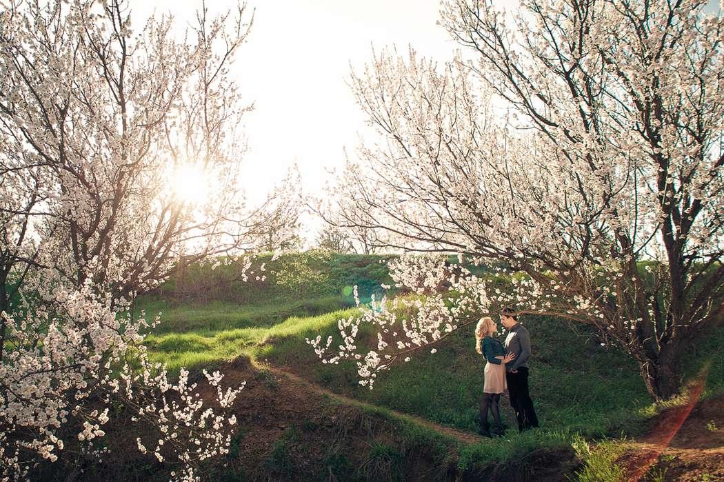 Фото 872847 в коллекции LoveStory - фотограф Екатерина Мужевская