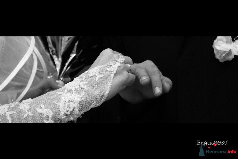 """Фото 87213 в коллекции """"Свадебное"""" тел: 923.673.33.05 - Свадебная фея"""