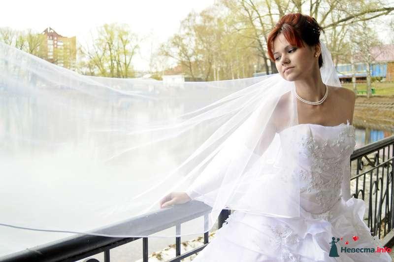 Фото 104928 в коллекции Невеста - Фотограф Любовь Холмогорова