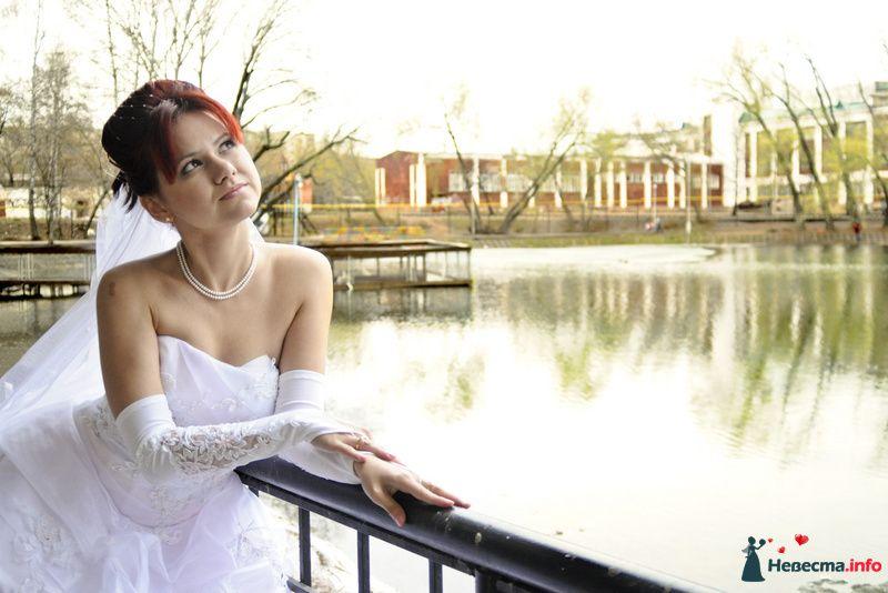 Фото 104931 в коллекции Невеста - Фотограф Любовь Холмогорова