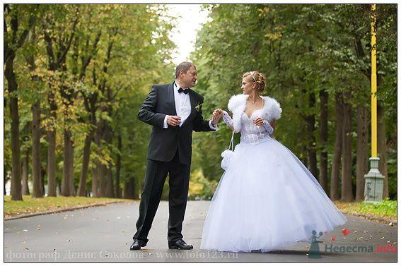 Фото 74623 в коллекции свадебные фото