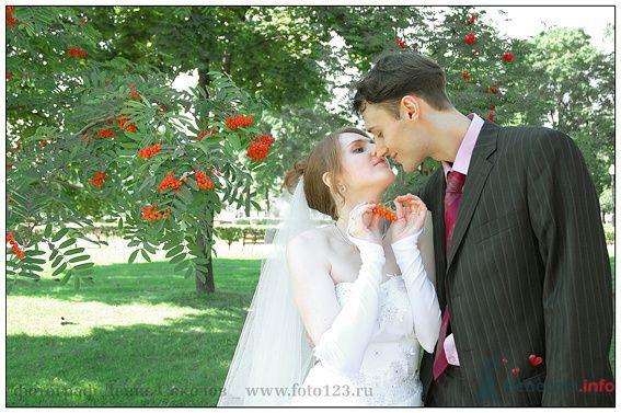 Фото 74858 в коллекции свадебные фото - Фотограф Денис Соколов