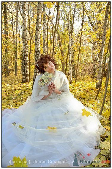 Фото 74897 в коллекции свадебные фото - Фотограф Денис Соколов
