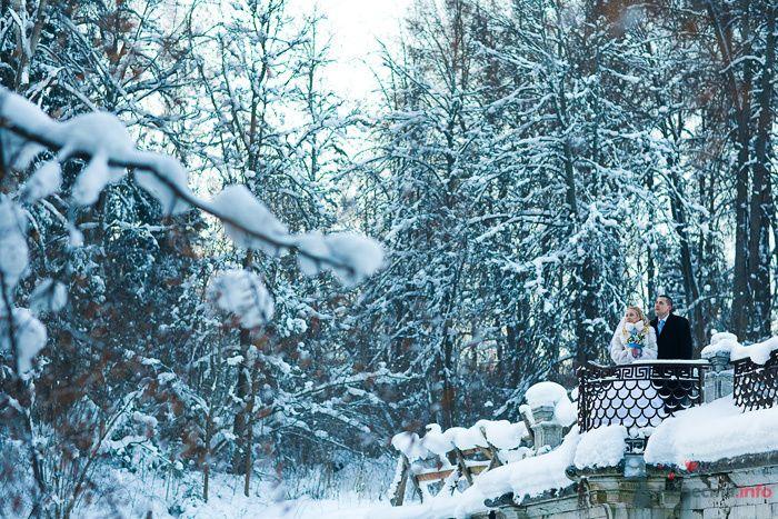 Фото 76200 Фотографы Никифоровы-Гордеевы Сергей и Константин